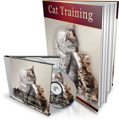 Product picture Cat Training - How You Can Train Your Cat
